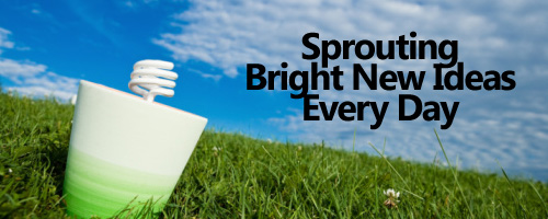 Sprouting Bright New Ideas Every Day